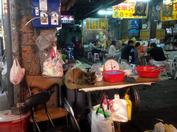 Night Market Cat, Taipei, Taiwan